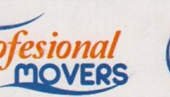 Profesional Movers