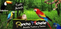 Rancho Michelle